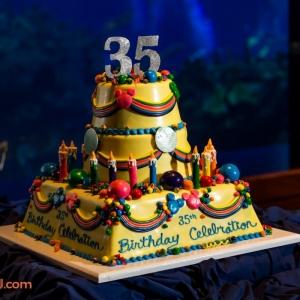EPCOT35 Birthday Cake