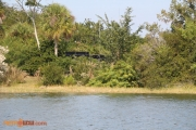 Remnants of Discovery Island