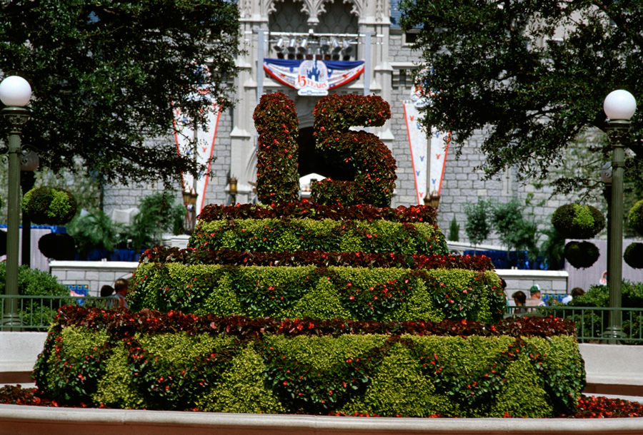 Sensational Wdw 15Th Anniversary Birthday Cake In Front Of Cinderellas Castle Funny Birthday Cards Online Fluifree Goldxyz