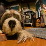 Carousel of Progress Dog
